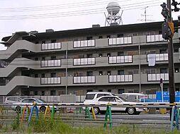 鮎川ハイツ[2階]の外観