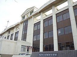 羽根井小学校 ...