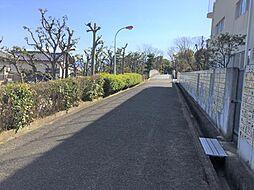 遊歩道です。
