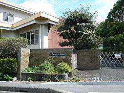 板山幼稚園