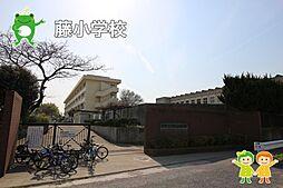 藤小学校(80...