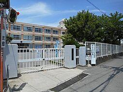 野崎小学校