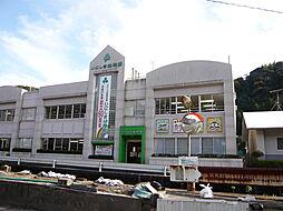 いにしき幼稚園