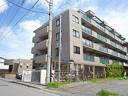 西鶴間3丁目 ステイツ鶴間 3F
