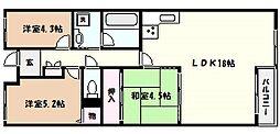 芦屋翠ケ丘町アーバンリズ[1階]の間取り