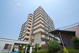 大阪府東大阪市稲田上町1丁目の賃貸マンションの外観