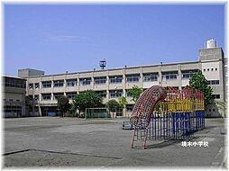 境木小学校