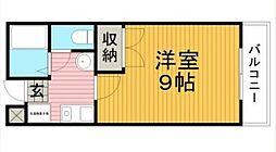ハイツ桜井[1階]の間取り