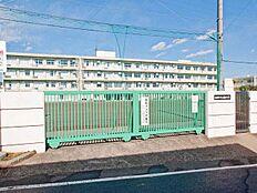 町田市立成瀬台中学校(596m)