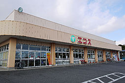 エコス 金沢店...