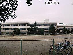 新座小学校