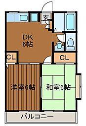 Pハイツ[2階]の間取り