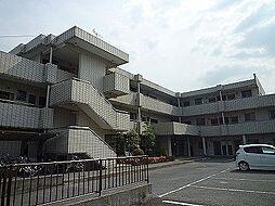 アビタシオン新柏[3階]の外観