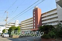 東山本ハイツ[6階]の外観
