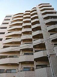セントヒルズ目黒[7階]の外観