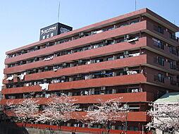 ライオンズプラザ南太田[601号室]の外観