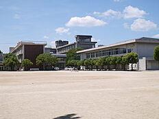 高砂市立高砂小学校まで1243m