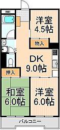 関屋ステーションハイツ[303号室]の間取り