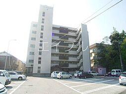 ハイツヨシカワ[4階]の外観