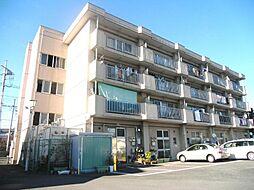 松沢マンション[306号室]の外観