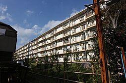 市川中山住宅7号棟[208号室]の外観