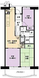 URアーバンラフレ小幡5号棟[5階]の間取り