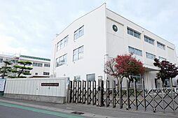向陽台小学校 ...