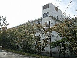 玉川小学校