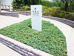 津田沼ハイライズ