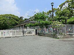 鶴岡八幡宮鶴岡...