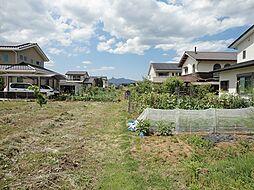 裏庭の菜園部分...