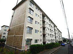 高倉台9団地38号棟[1階]の外観