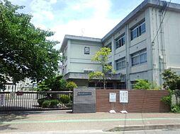 市立寿恵野小学...
