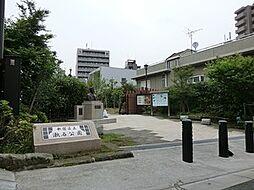 周辺環境:漱石...