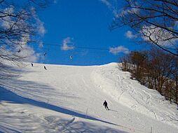 箱館山スキー場...