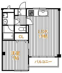 東京都葛飾区奥戸3丁目の賃貸マンションの間取り