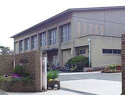 中学校岸和田市...