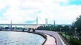 中川堰堤から河川&スカイツリーを望みます