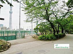 区立隅田公園 ...