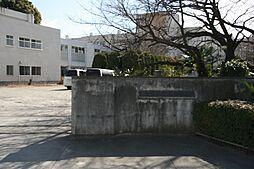 小学校熊谷市立...