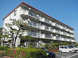 南区 芳川ハイツ 2号棟 4階