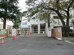 横浜市立初音が...