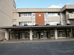 大瀬中学校