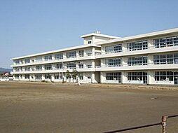 学区:鹿島小学...