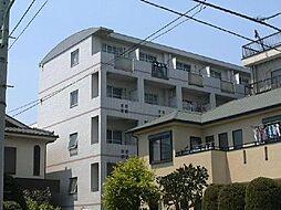 埼玉県川口市青木2丁目の賃貸マンションの外観
