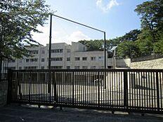 中学校千登世橋中学校まで185m