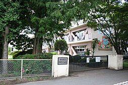 芳野小学校