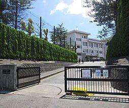 衣笠中学校