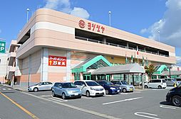 ヨジヅヤ大口店...