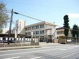 学区 赤塚中学...